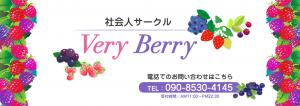 社会人サークル VeryBerry