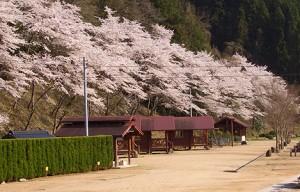 湯ノ瀬温泉キャンプ場